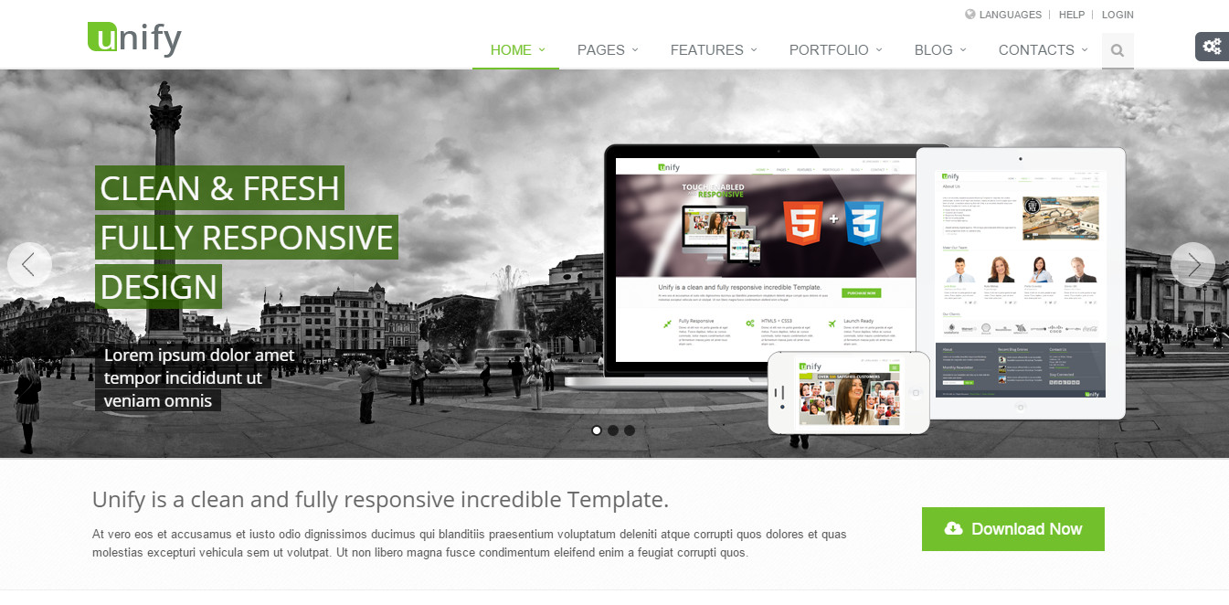 CMS4BIZ Unify template